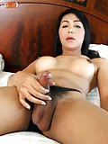 Asian Ladyboy Ae