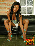 Ebony tgirl stripping panties