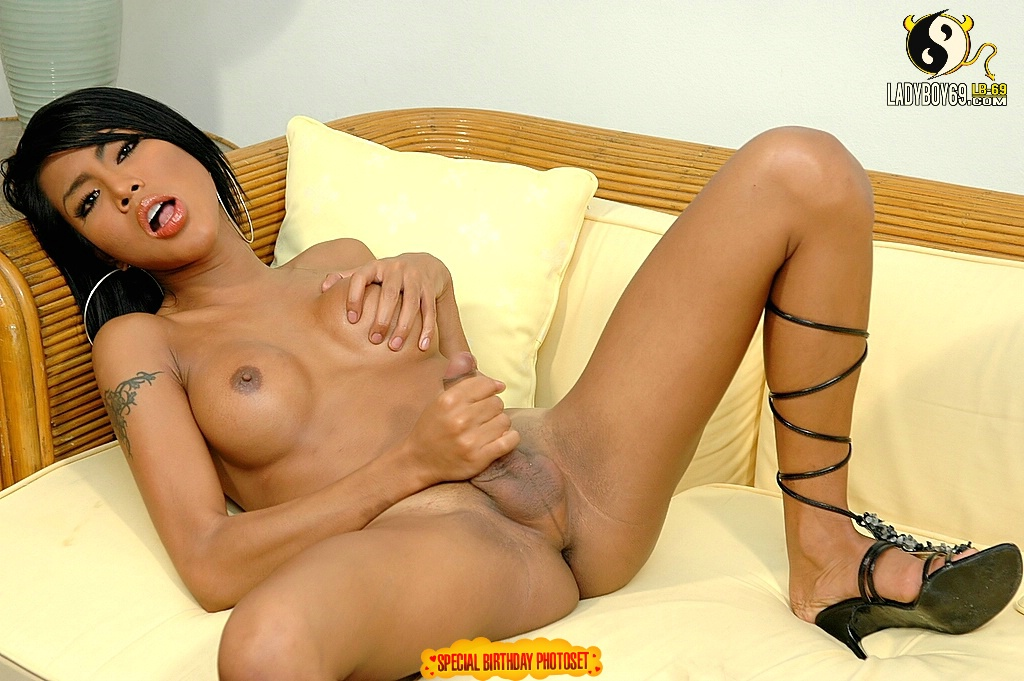 Asian Busty Tittes Movies 71