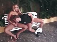 Outdoor mutual fucking on a bench