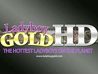 Ladyboy Army solo