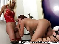 Blonde Shemale Tries A Threesome With A Couple