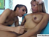 Black tranny shemale amateurs play with eachother