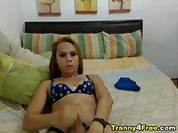 Hot Ladyboy Strokes her Cock