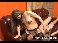 Skilful slave pleases his TS mistress