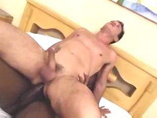 Wild black trans eats a white stud