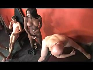 Lewd Orgy For Hot Trannies & Studs