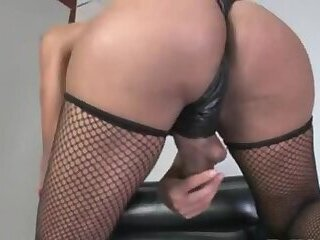 Busty shemale in pants and leather