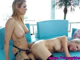 Shemale tranny pegged from behind by strapon babe