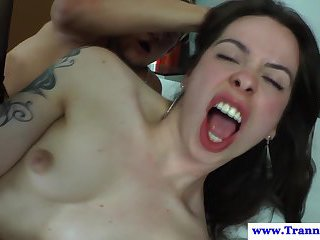 Trans shemale hottie getting bumfucked